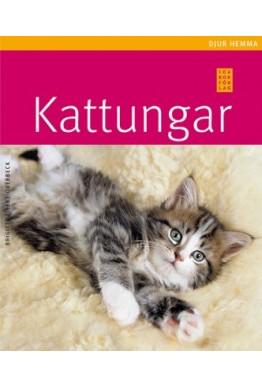 Kattungar - bok